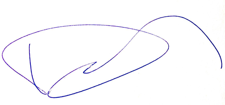 Signature David